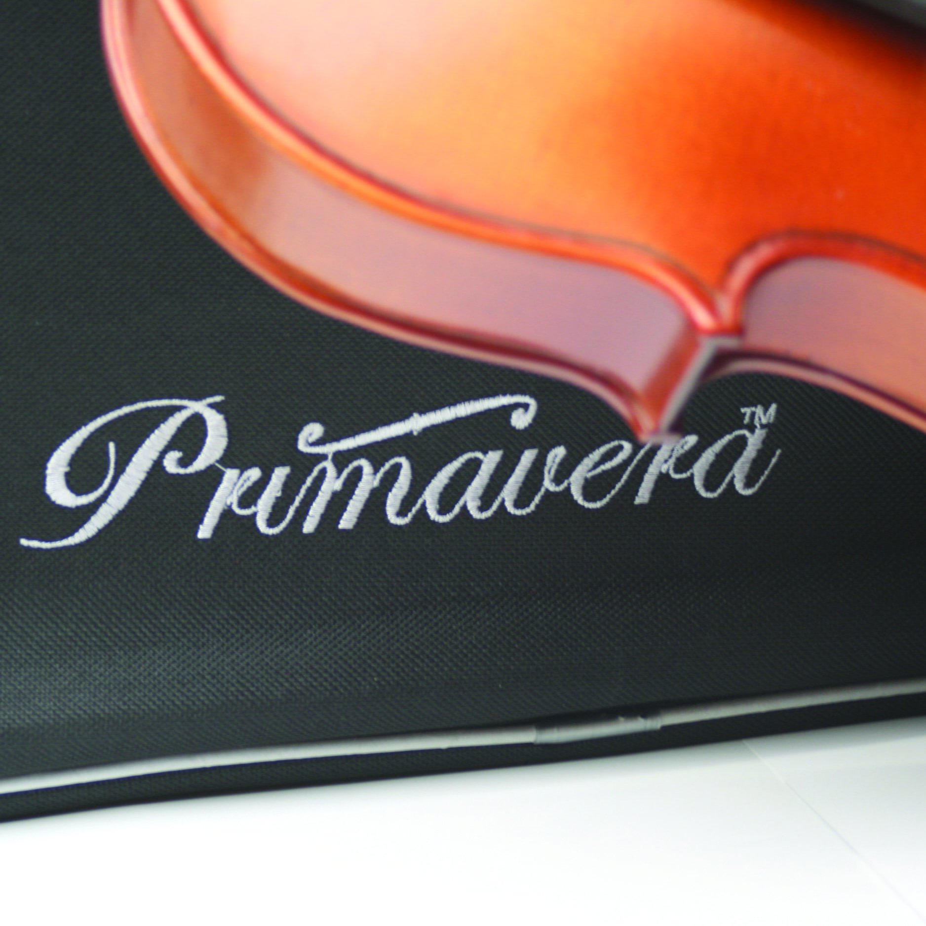 Close up primavera p200 violin