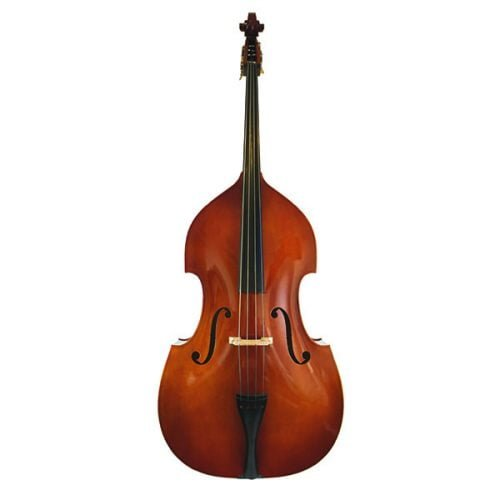 Eastman VB80 double bass front