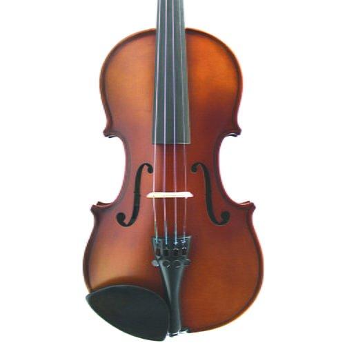Loreato Violin Front Cut
