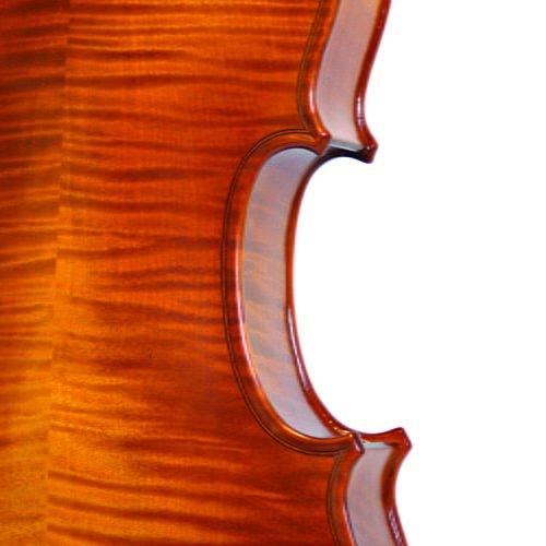 loreato violin ribs
