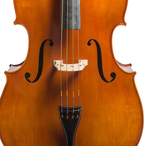 Eastman Westbury Double Bass VB200 Front Close Up