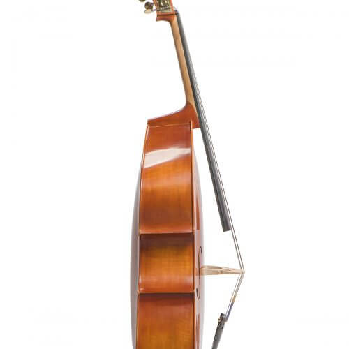 Eastman VB200 Westbury Double Bass Side View