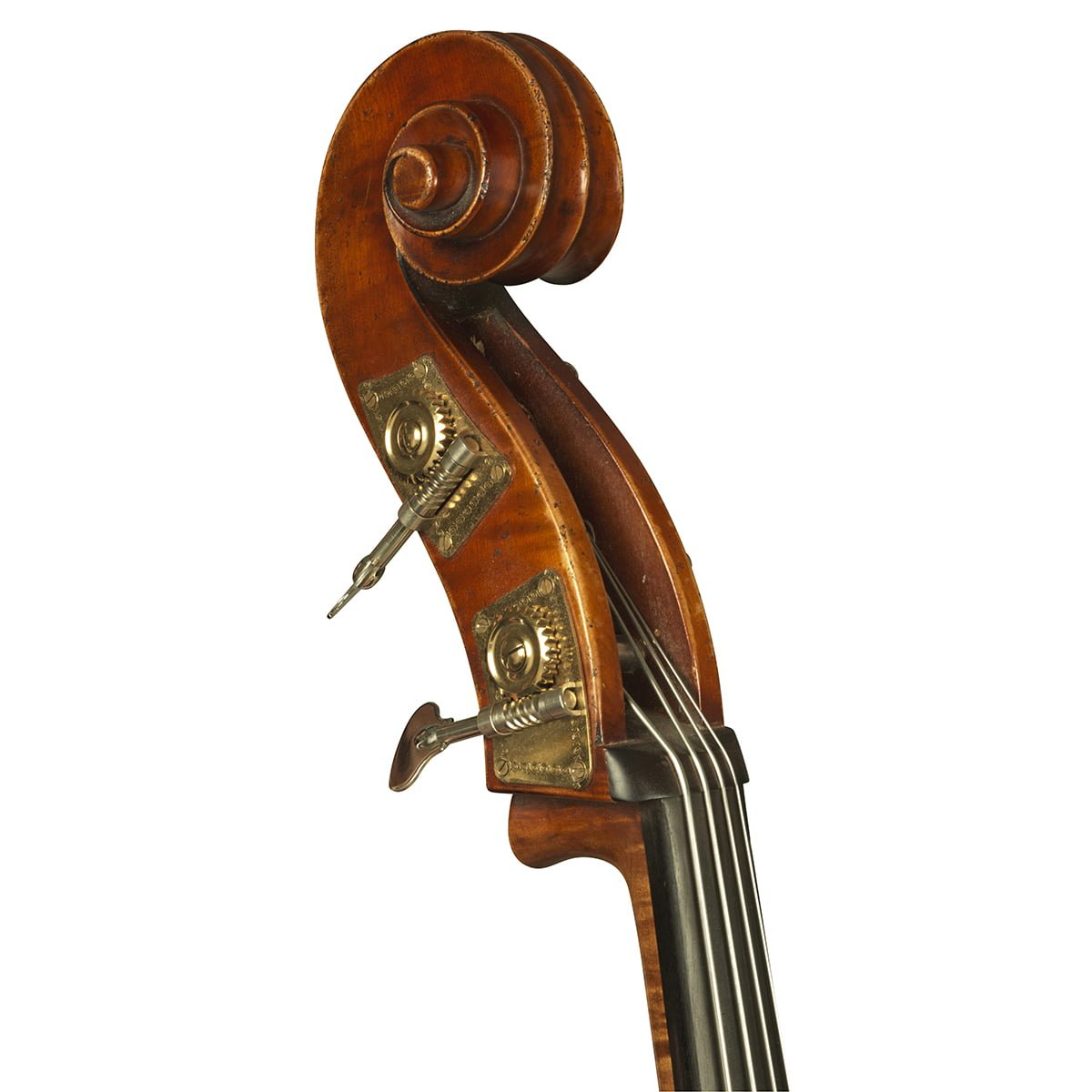 Jay Haide Double Bass Scroll