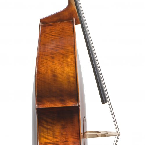 Concertante Double Bass VB305 Side