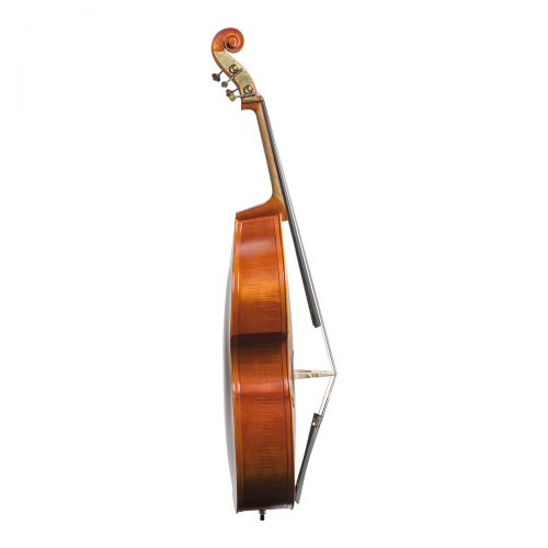Vivente double bass set up with Helicore strings side view