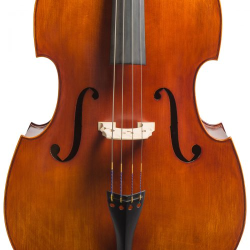 Vivente double bass close front