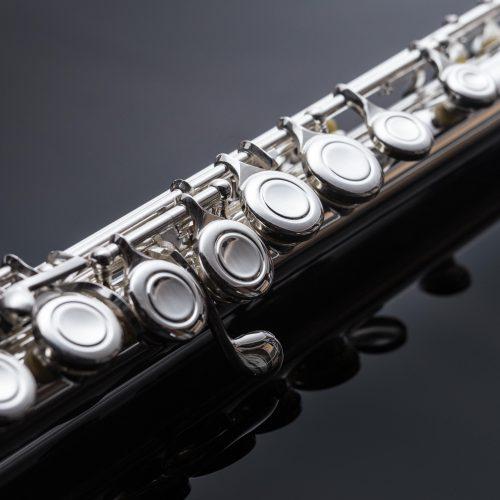 JP111 Flute Macro Shot