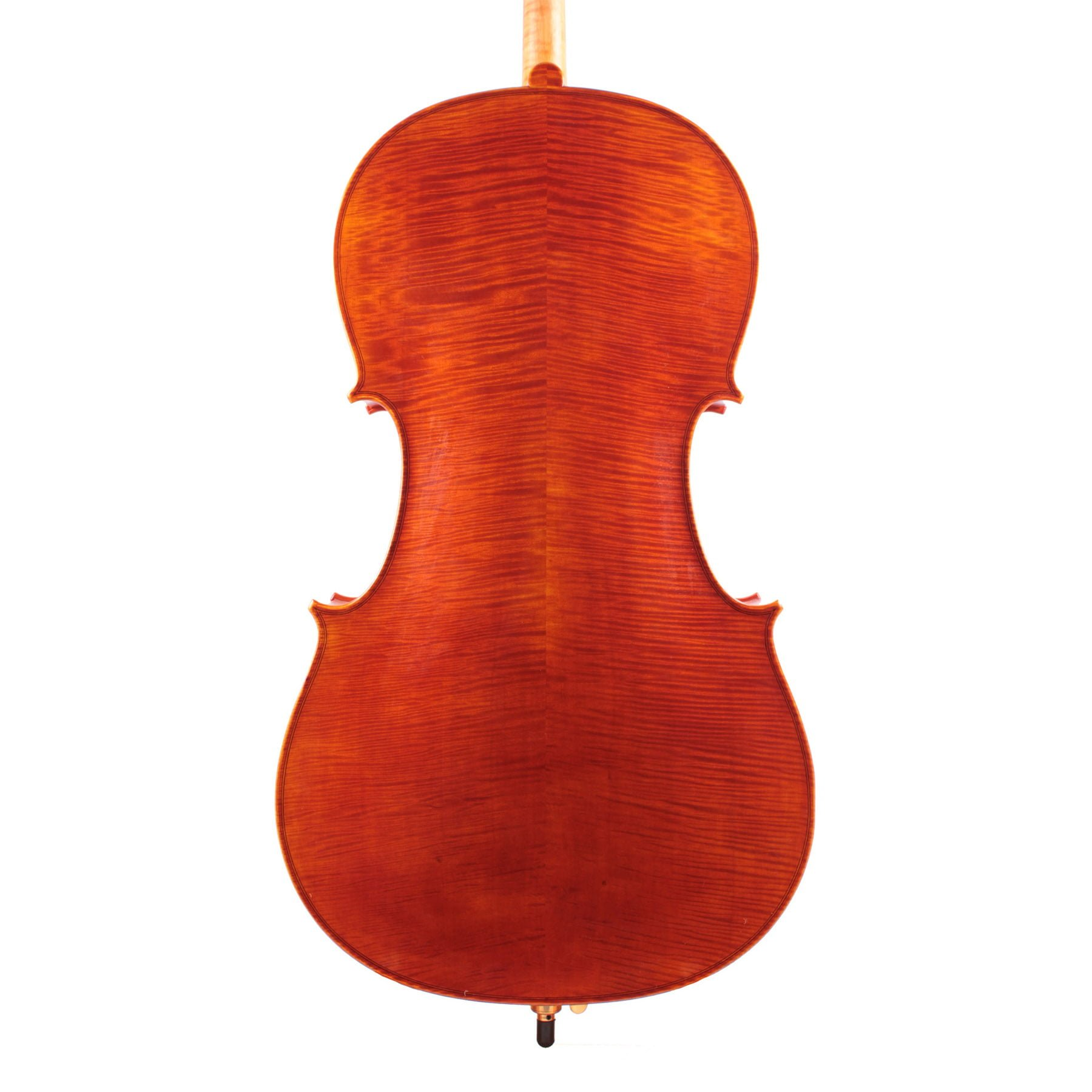 Jay Haide Superior Cello back view