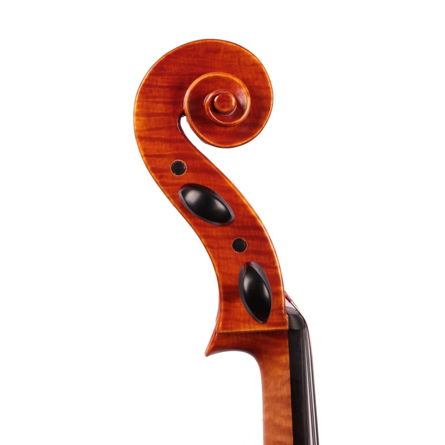 Jay Haide Superior Cello side view of the scroll