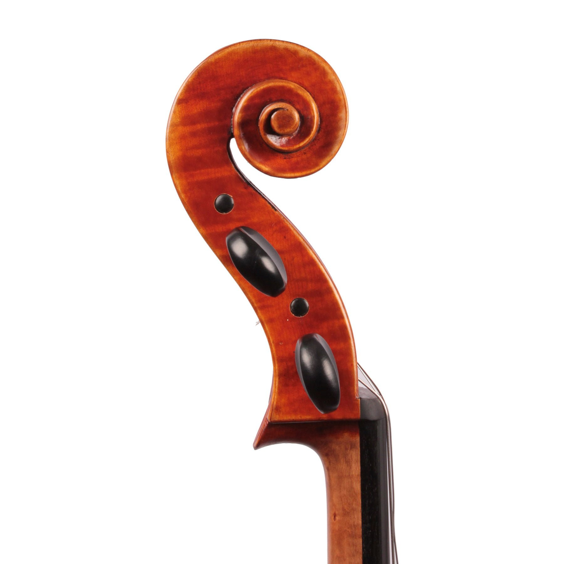 Jay Haide à l'ancienne Antiqued Cello side view of scroll