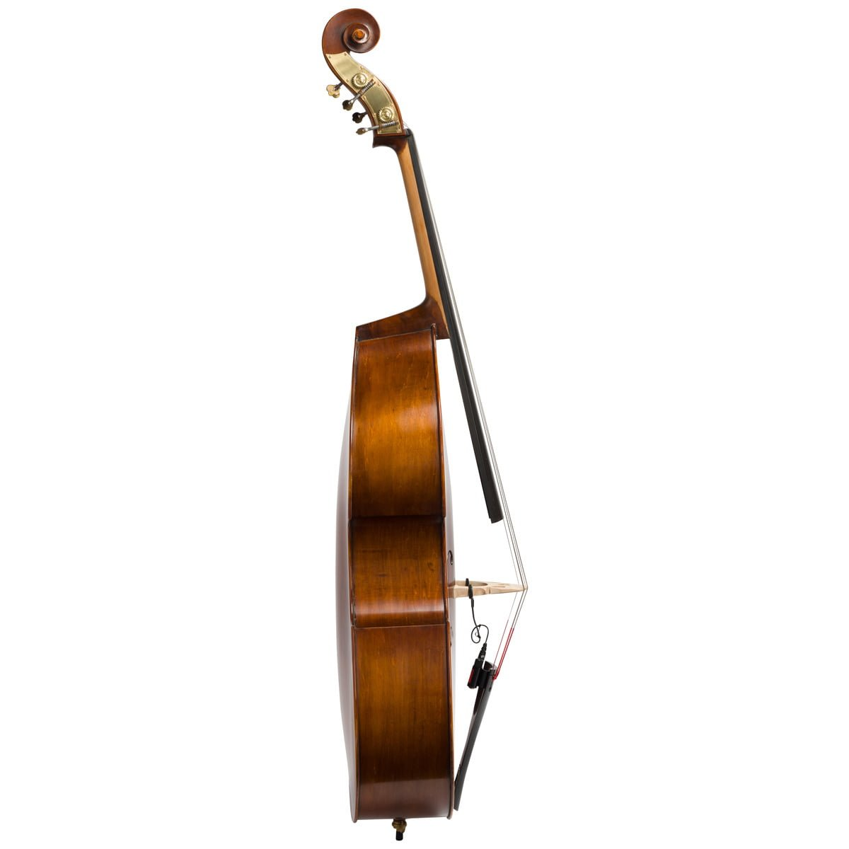 Side view of Eastman VB105 double bass fitted with an adjustable bridge and Spirocore strings