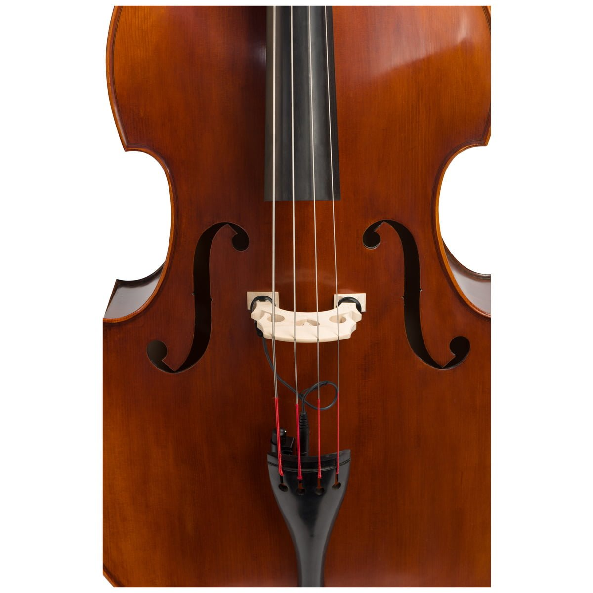 Front view of Eastman VB105 double bass fitted with an adjustable bridge and Spirocore strings