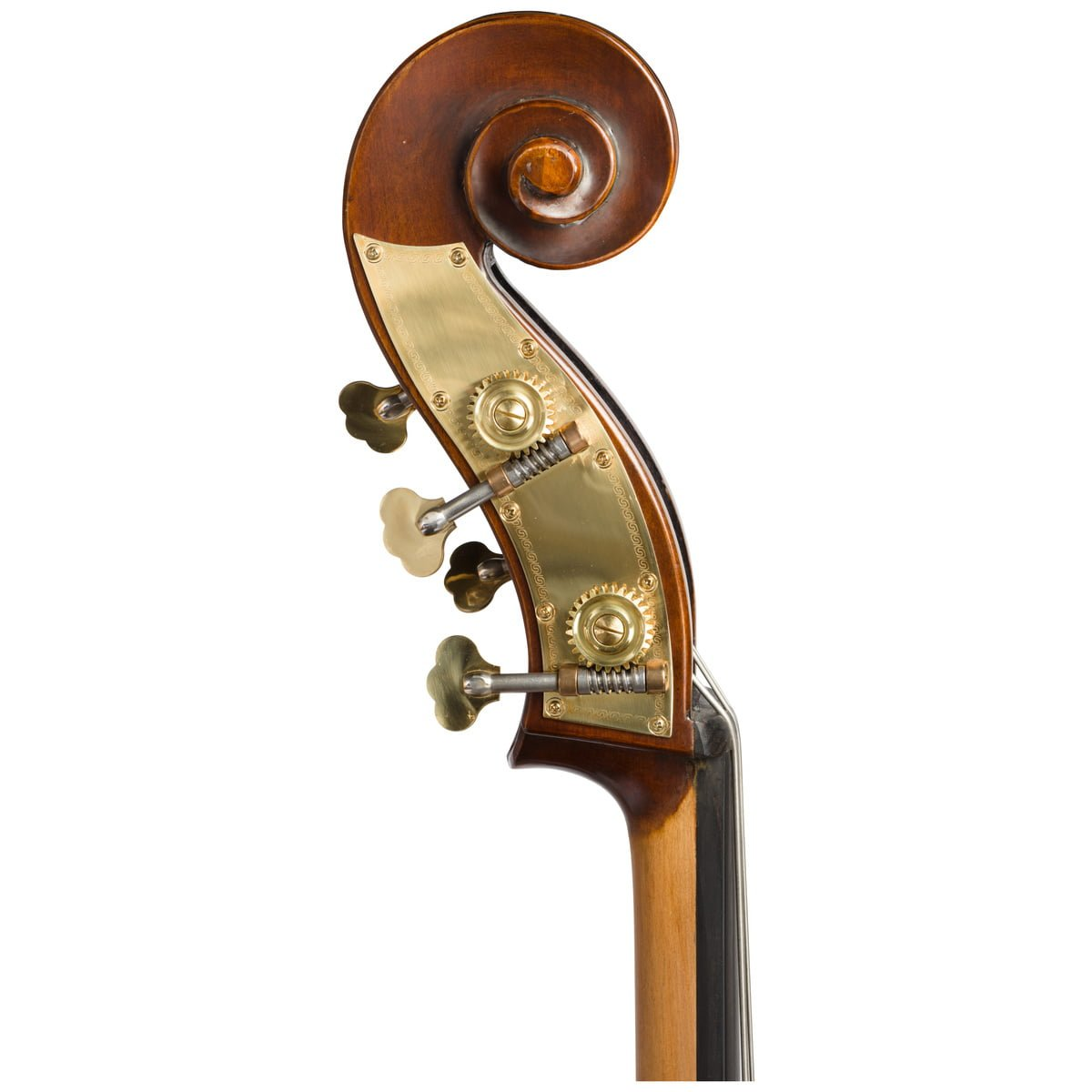 Scroll view of Eastman VB105 double bass fitted with an adjustable bridge and Spirocore strings