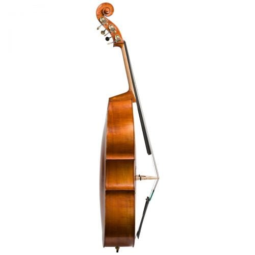 Side view of an Eastman VB200 5 String double bass