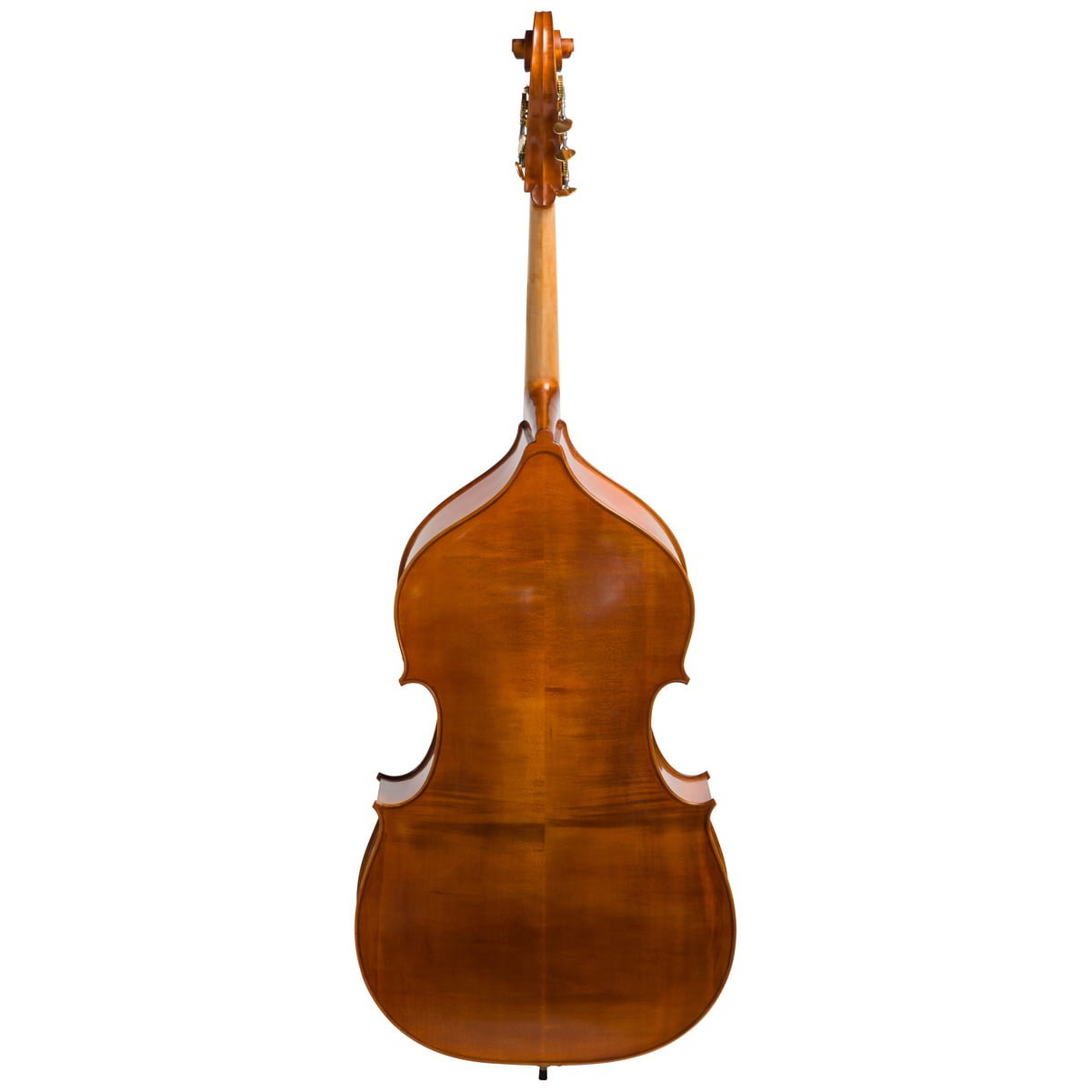 Back view of an Eastman VB200 5 String double bass