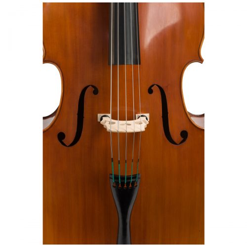 Close up view of an Eastman VB200 5 String double bass
