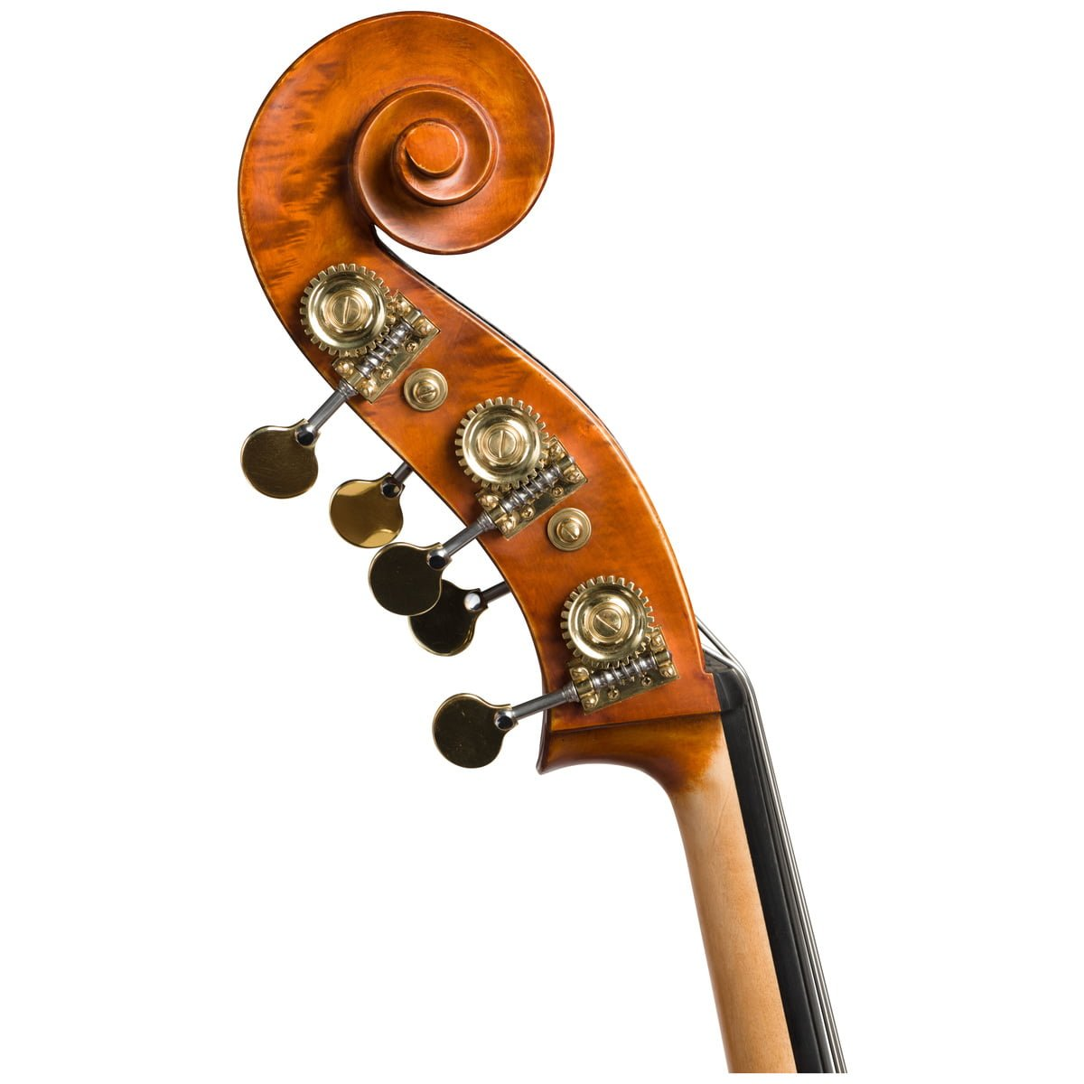 Scroll view of an Eastman VB200 5 String double bass