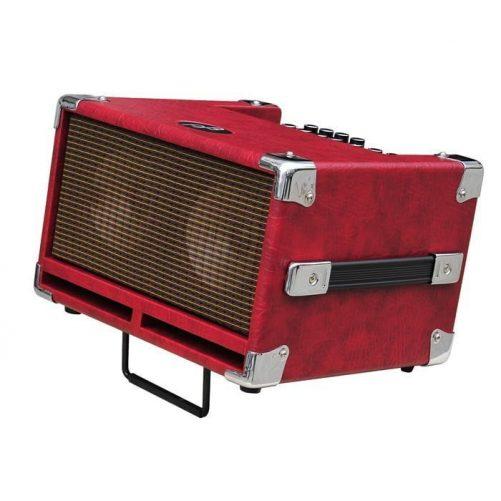 Phil Jones Bass Cub BG 100 Red Stand
