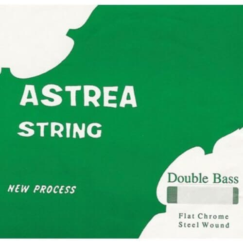 Astrea Double Bass E String