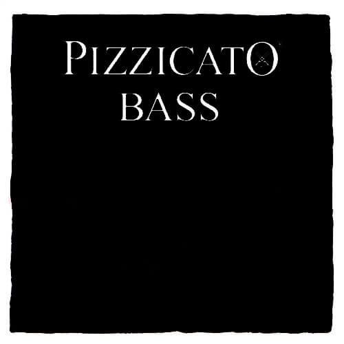 Pizzicato Double Bass E String